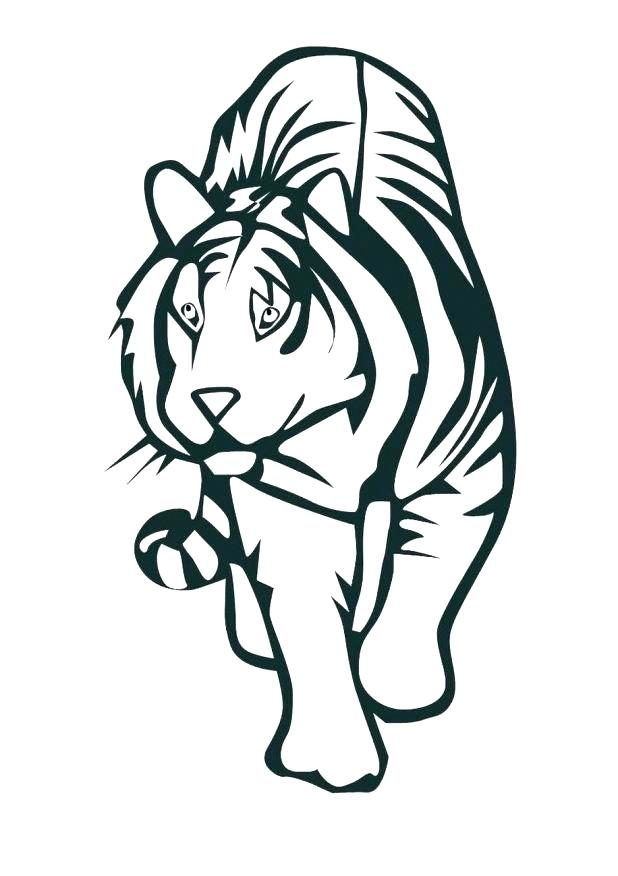 618x876 Cute Tiger Coloring Pages Cute Tiger Coloring Pages Baby Tiger