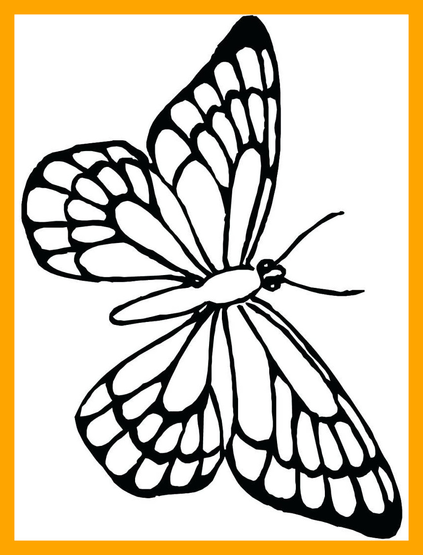 858x1124 The Best Unparalleled Butterfly Activity Sheets Monarch Coloring