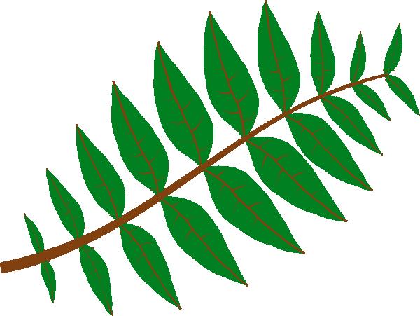 600x451 Jungle Leaves Clip Art Leaves Clip Art, Leaves