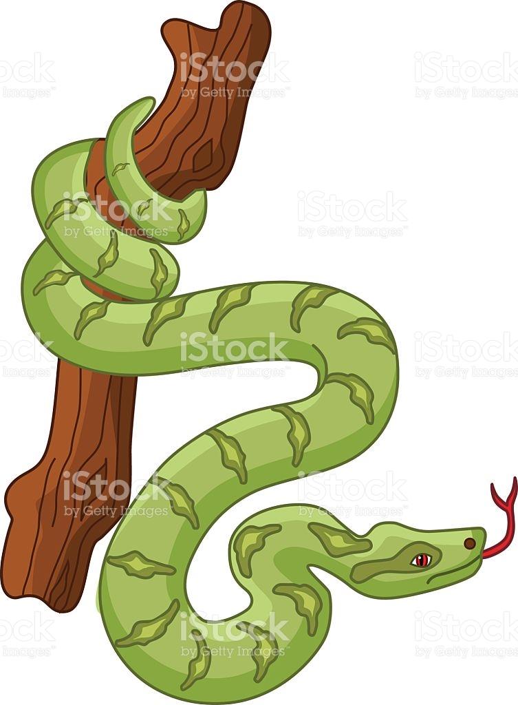 753x1024 Tree Python Clipart Jungle
