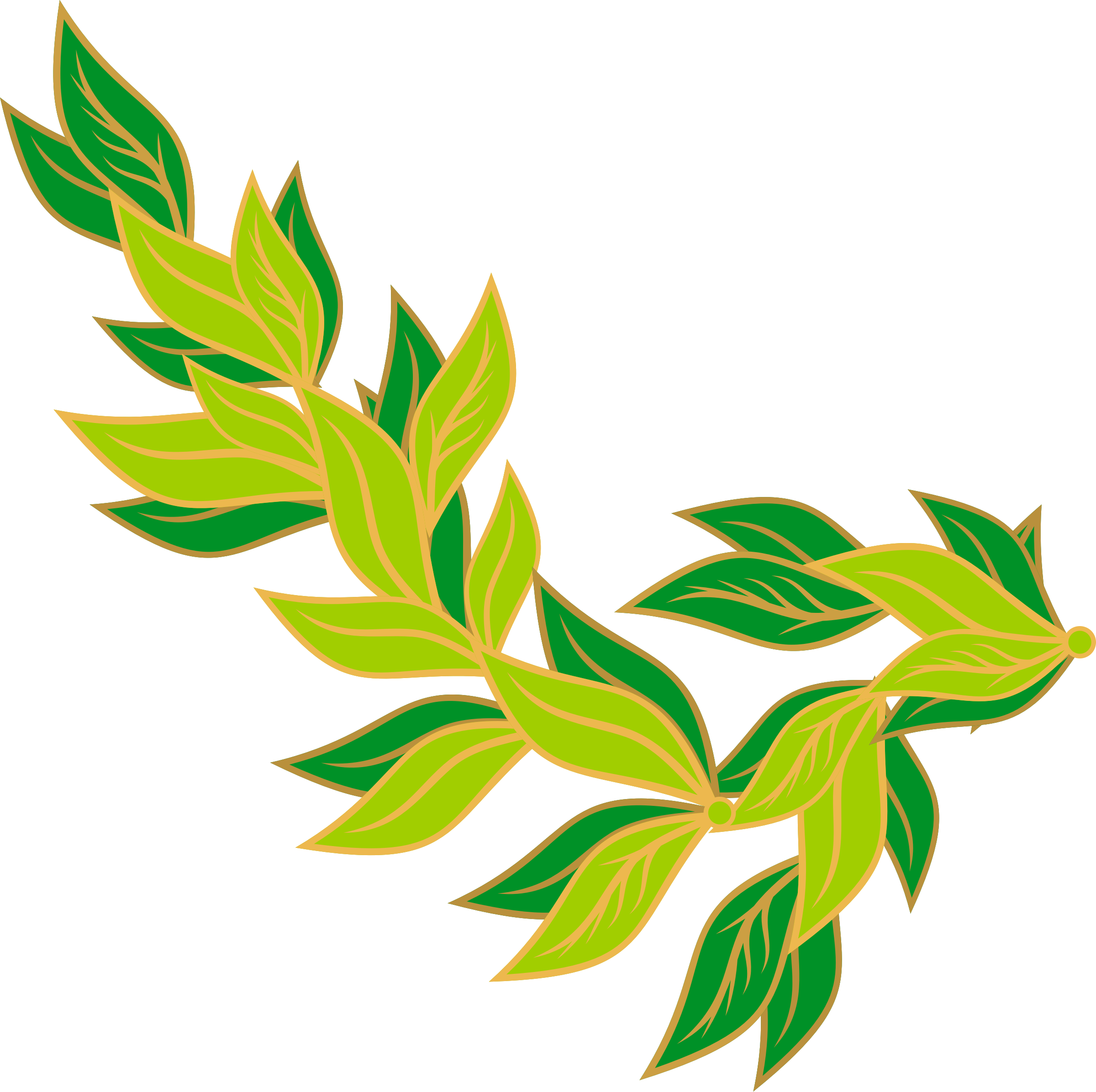 2400x2393 Bay Leaf Icons Png