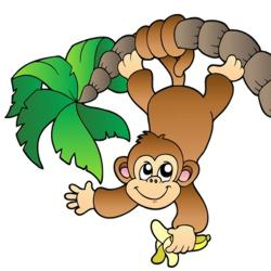 250x250 Collection Of Jungle Monkey Clipart High Quality, Free