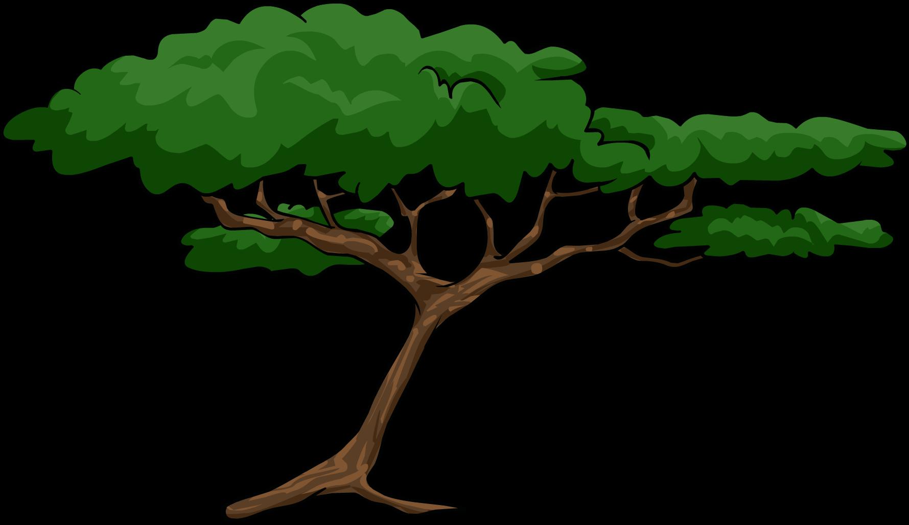Jungle Tree Clipart