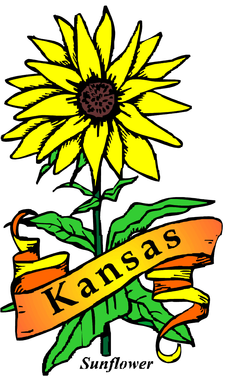 750x1230 Mystery Books That Take Place In Kansas The Cozy Mystery List Blog