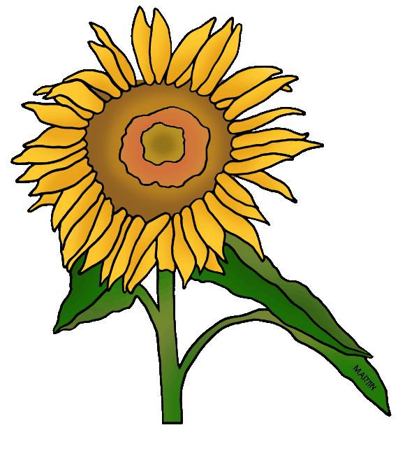 570x648 United States Clip Art By Phillip Martin, State Flower Of Kansas