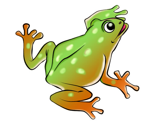 500x435 Frog Clipart