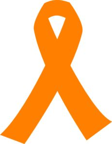 231x297 Understand The Anatomy Of The Spinal Cord Leukemia Awareness