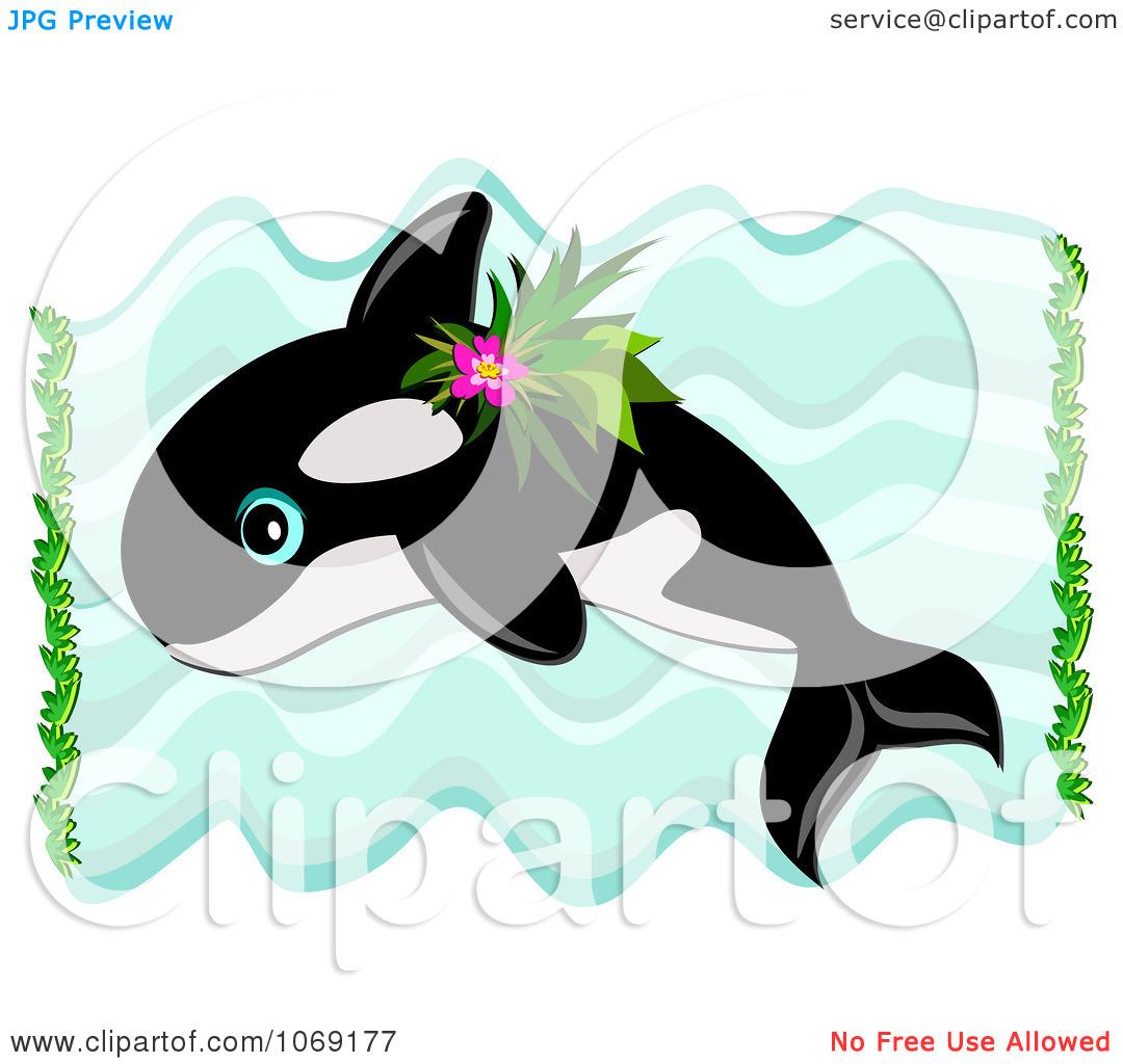 1080x1024 Clip Art Orca Whale Clip Art