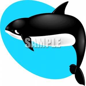 299x300 Fat Orca Whale