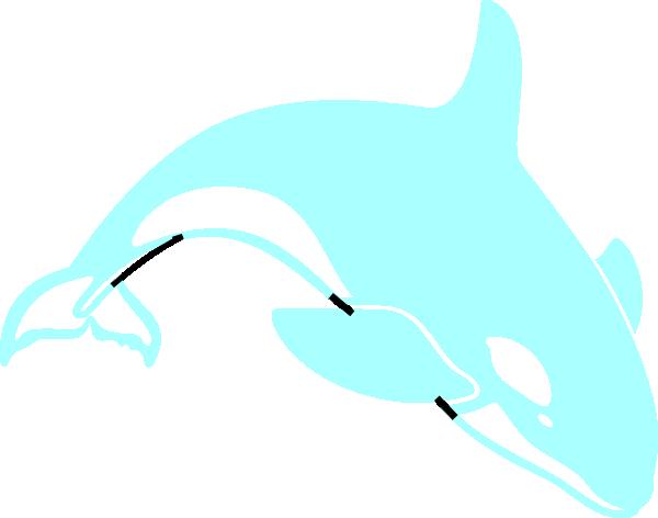 600x472 Orca Clip Art
