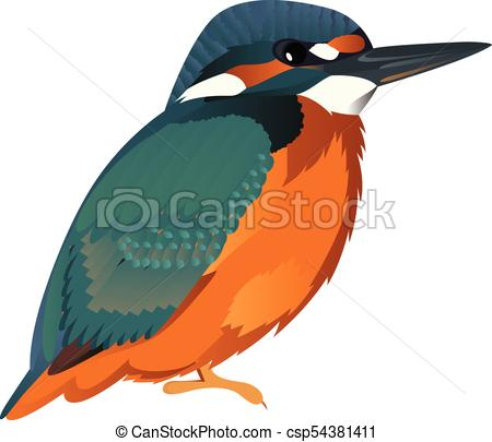 450x405 Common Kingfisher Cartoon Bird Vector Illustration Vector Clip Art