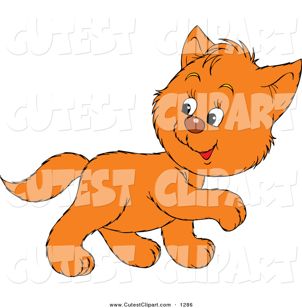 1024x1044 Vector Clip Art Of A Cute Orange Kitty Walking To The Right