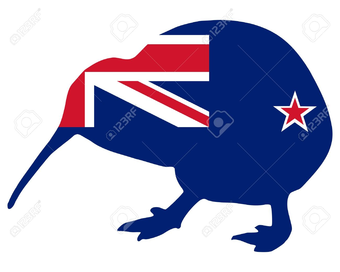 1300x1040 New Zealand Clipart Kiwi Bird Clipart