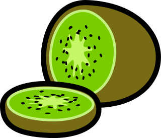 320x274 Free Kiwi Fruit Clipart, 1 Page Of Public Domain Clip Art