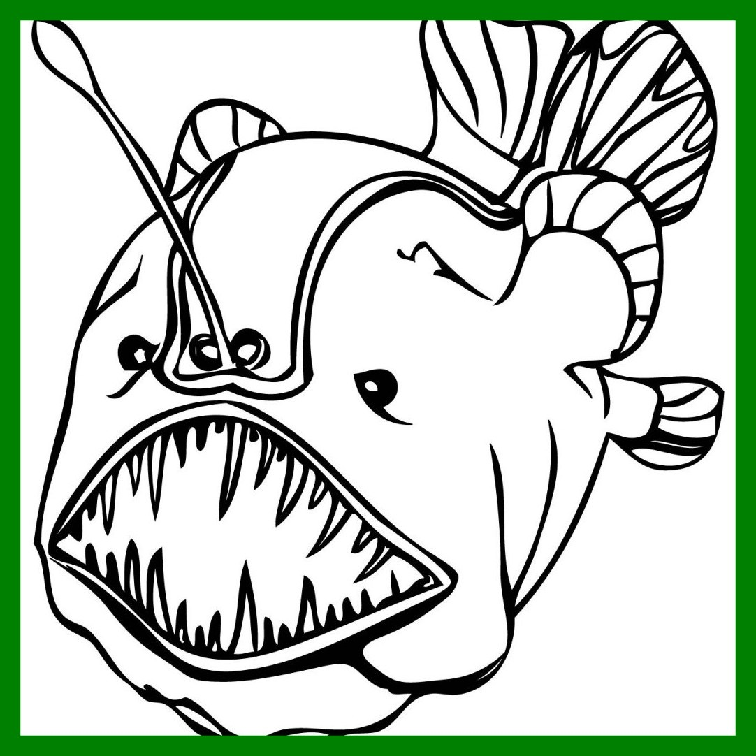 1082x1082 Stunning Koi Fish Coloring Page Clip Art Pics For Swordfish Ideas