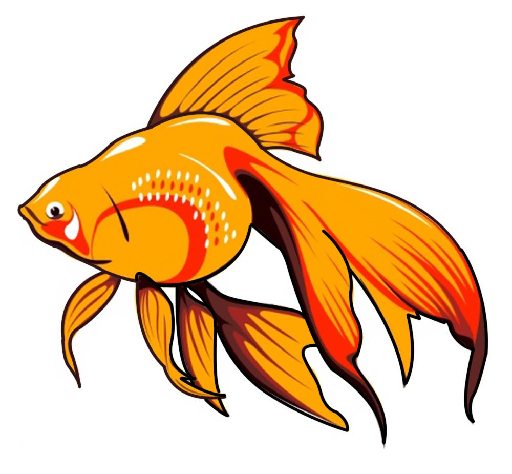 1000x925 Fish Cliparts