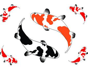 340x270 Koi Fish Silhouette Etsy