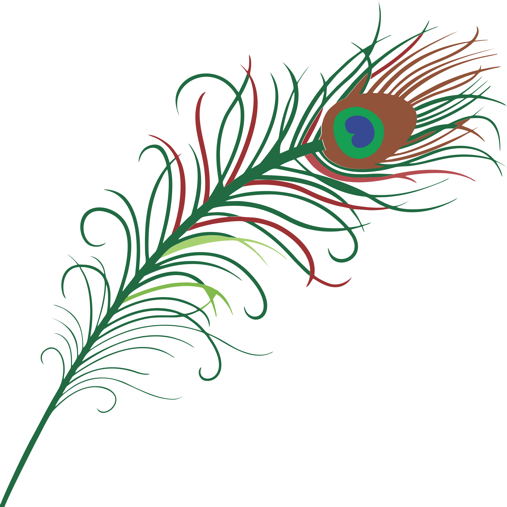 2000x2000 Peacock Feather Border Clipart Free Images Clipartix