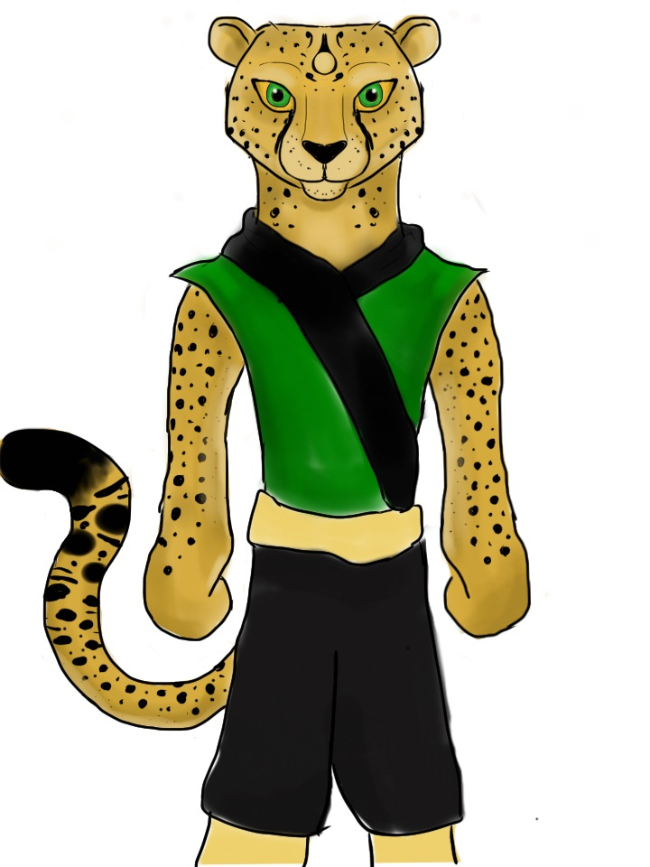 720x960 Kung Fu Panda Cheetah By Gingyliv28