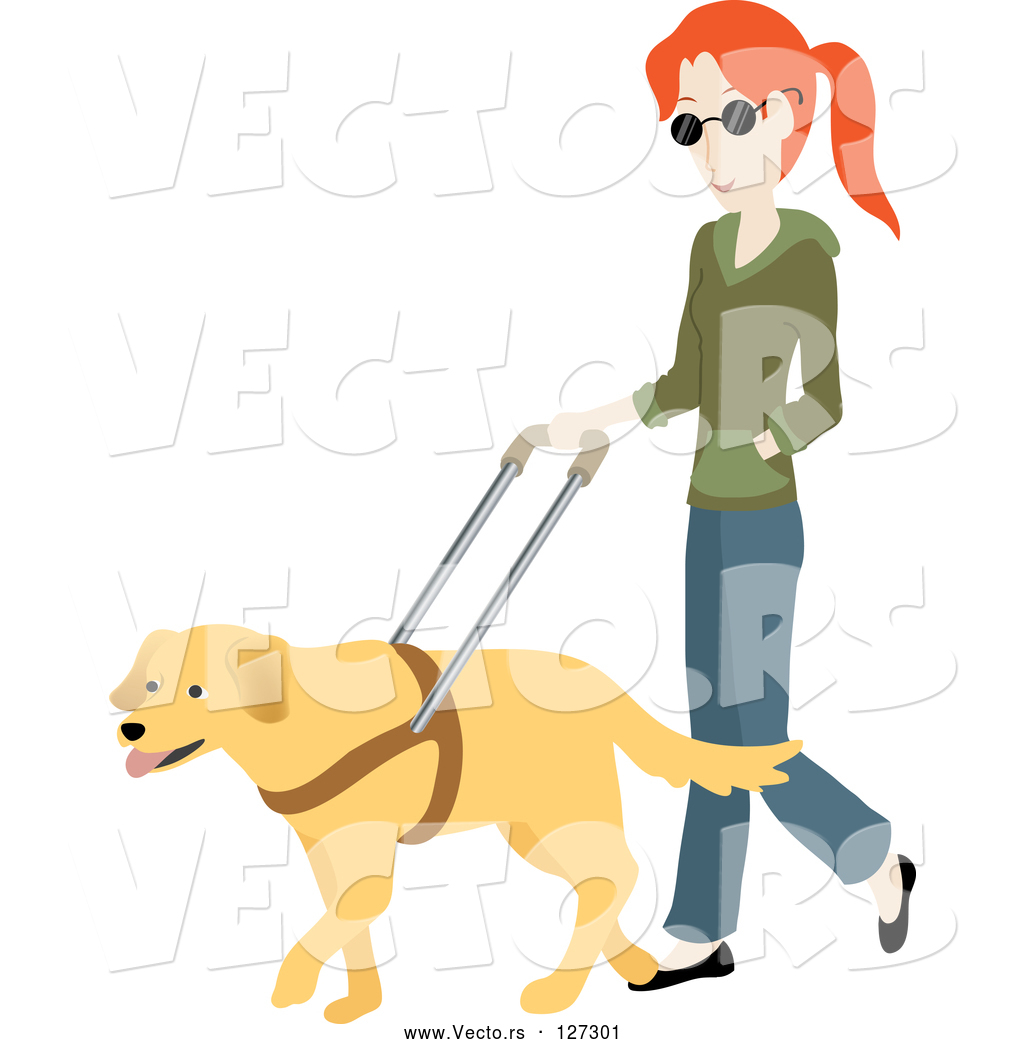 1024x1044 Vector Of Blind White Lady Walking With A Yellow Labrador Guide
