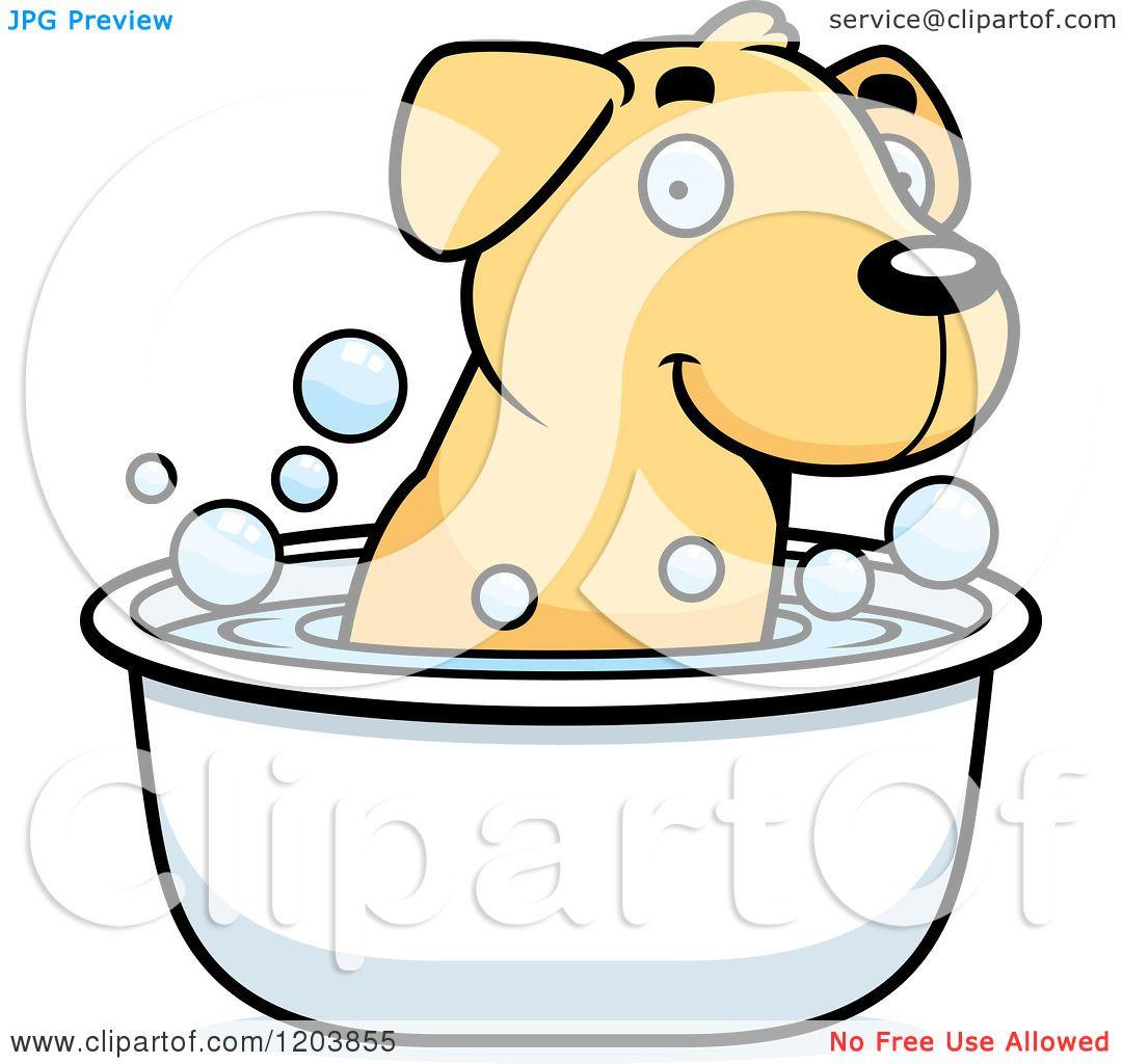 1080x1024 Cartoon Of A Cute Yellow Labrador Puppy Taking A Bath