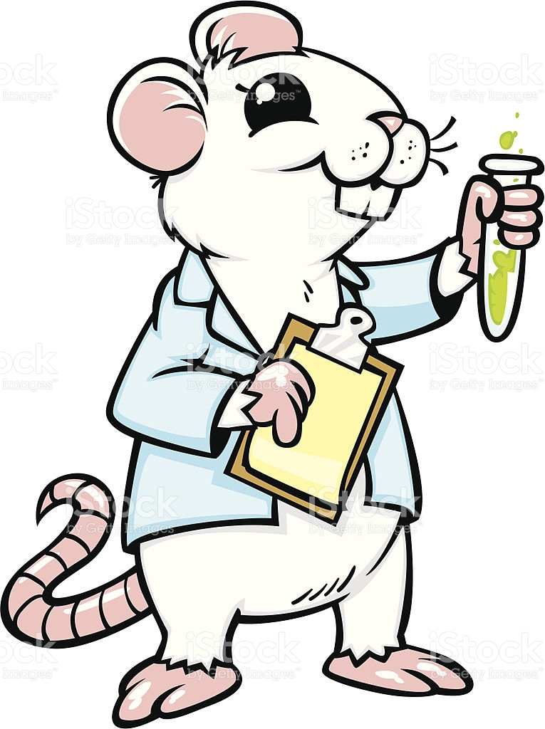 765x1024 Lab Animals Clipart Mouse Template Clip Art At Clker Com Vector