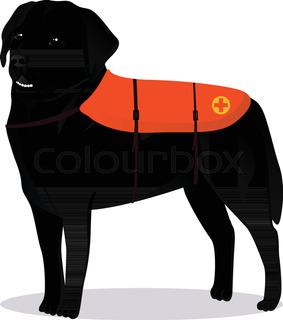 283x320 A Silhouette Of A Sitting Labrador Retriever Holding A Leash