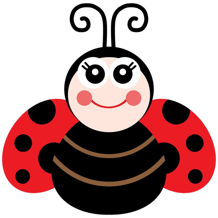 736x736 Ladybug Cartoon Clip Art Lady Beetle Clipart Cute Ladybug 20
