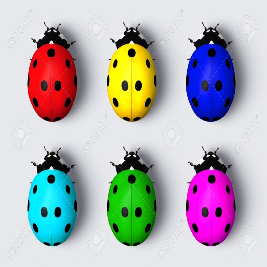 1024x1024 Top View Of Six Ladybugs With The Back Colored With Different