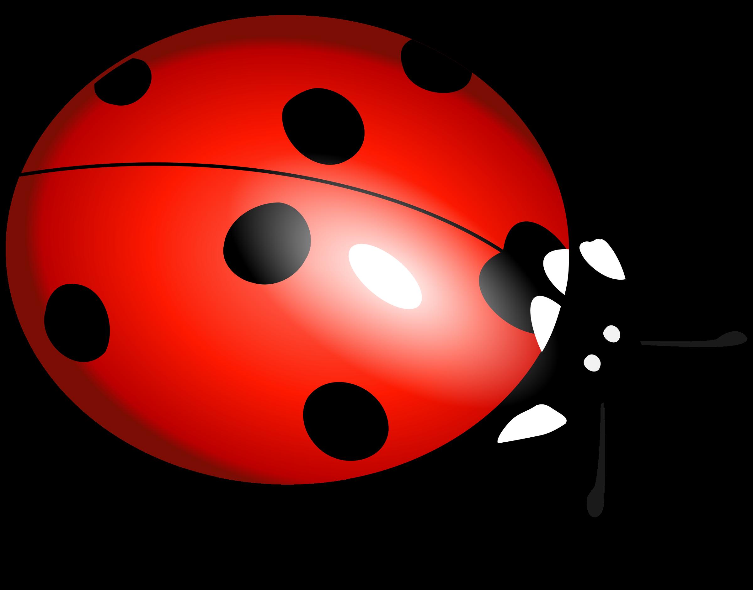 2400x1882 Ladybug Clipart File