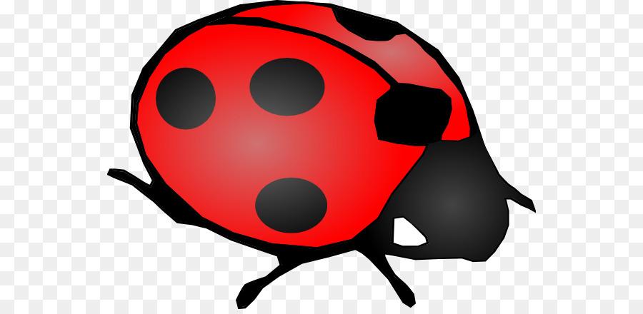 900x440 Beetle Ladybird Drawing Clip Art