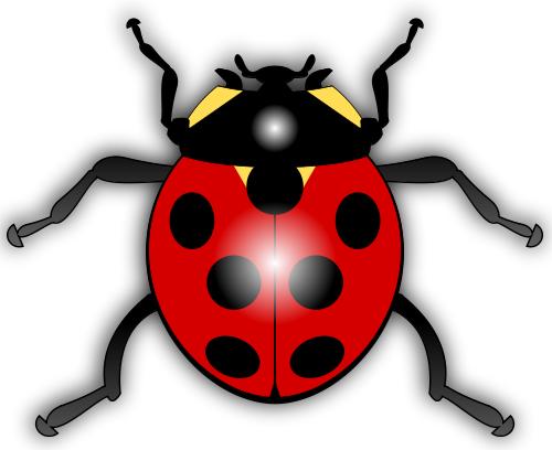 500x408 Everything Ladybug! The Source For Ladybug Stuff!