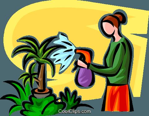 480x372 Woman Watering Plants Royalty Free Vector Clip Art Illustration