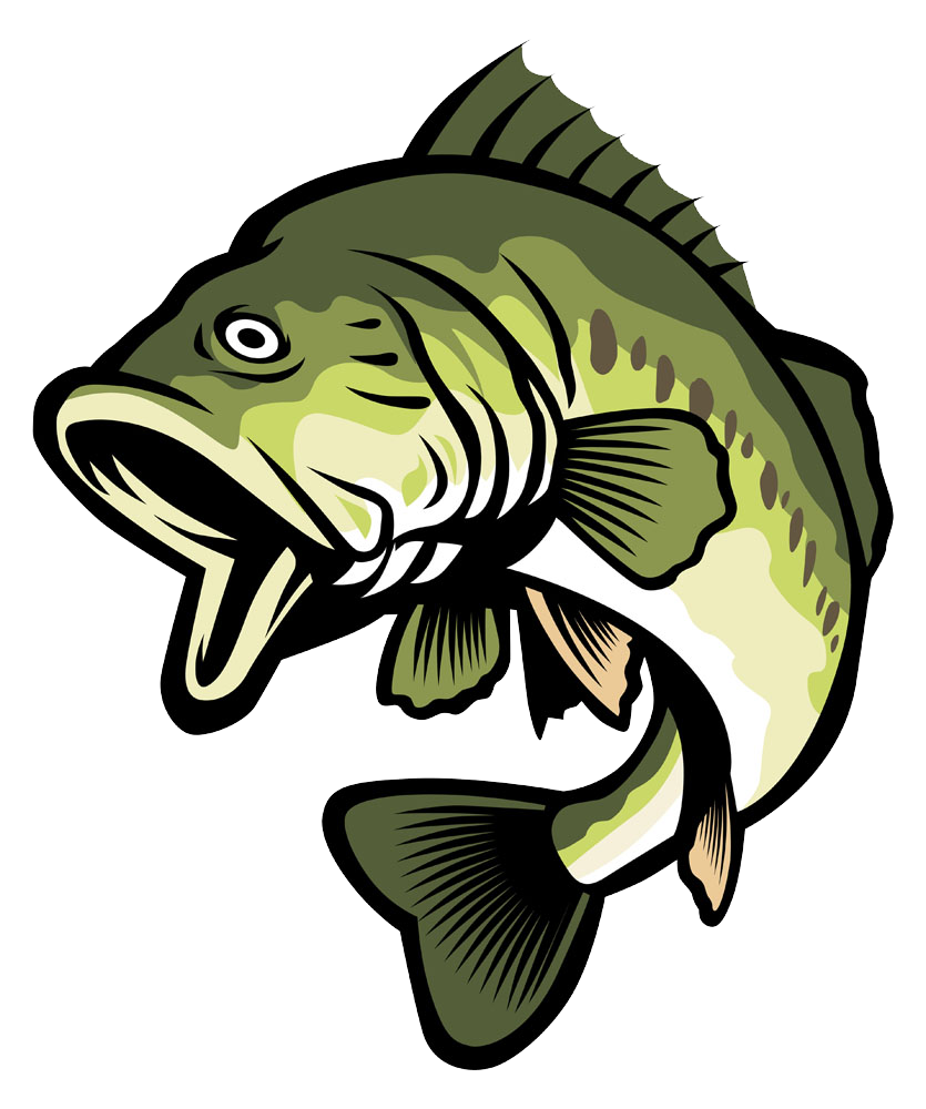 835x1000 Bass Stock Illustration Clip Art