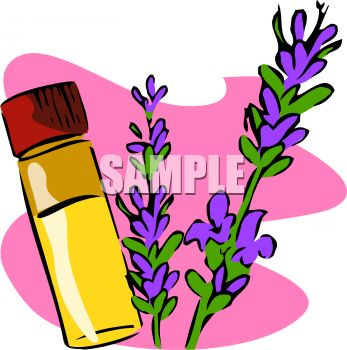 347x350 Vial Of Essential Oil Made With Lavender