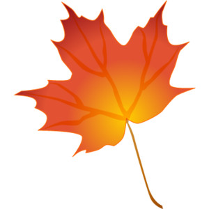300x300 Maple Leaf Clip Art Clipartlook
