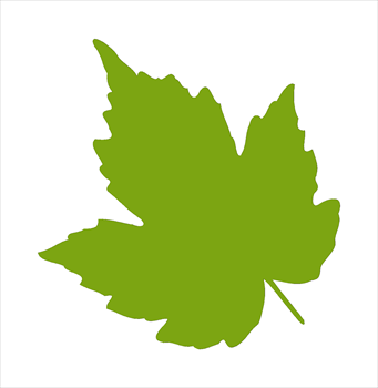 leaf clipart at getdrawings com free for personal use leaf clipart rh getdrawings com leaf clipart leaf clip art free
