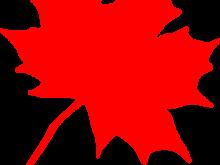 220x165 Maple Leaf Clipart Maple Leaf Clip Art Image Clipart Panda Free