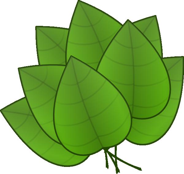 600x565 Free Jungle Leaves Clipart Preschool Jungle Leaves