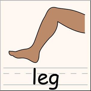 leg clipart at getdrawings com free for personal use leg clipart rh getdrawings com legs clipart black and white hairy legs clipart