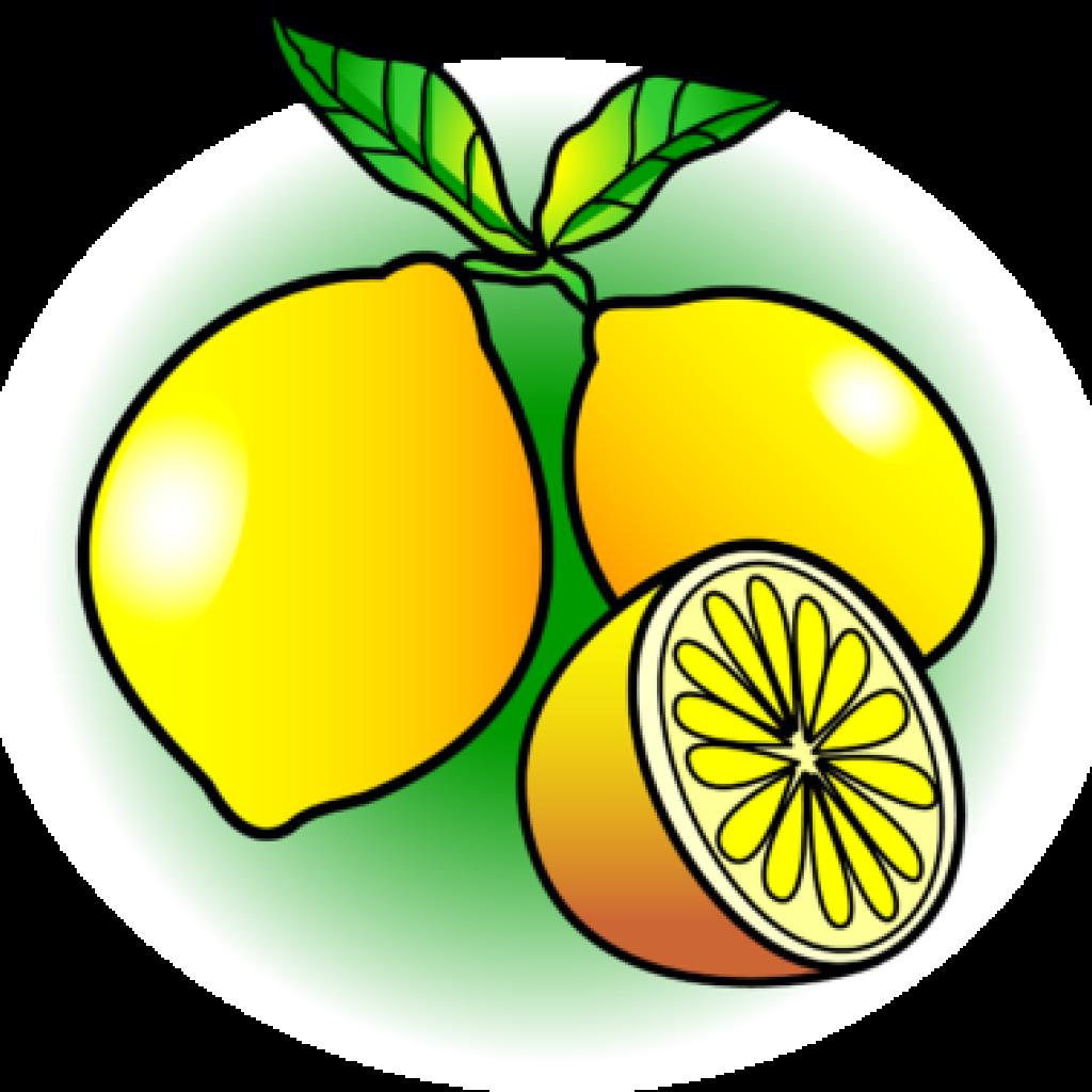 1024x1024 Lemon Clipart House Clipart