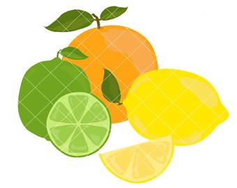 340x270 Citrus Fruits Clipart