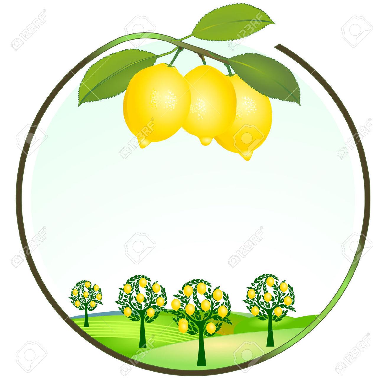 1300x1300 Lemon Clip Art Free Clipart Images 2