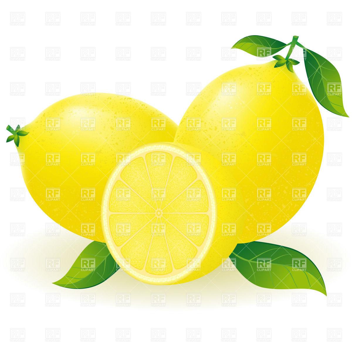 1200x1199 Lemon With Segment Vector Image Vector Artwork Of Plants