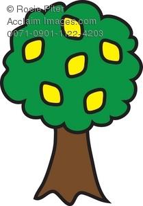 209x300 Clipart Lemon Tree Royalty Free Clip Art Vector Images