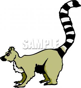 322x350 Lemur Clip Art Clipart Panda