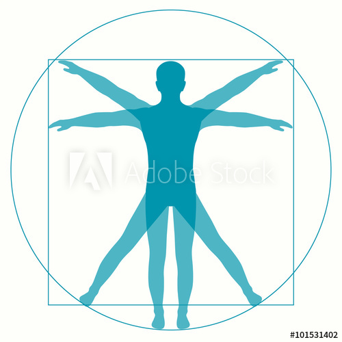 500x500 Leonardo Da Vinci Vetruvian Man, Human Anatomy