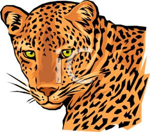 300x264 The Face Of A Leopard Clip Art Clipart Panda