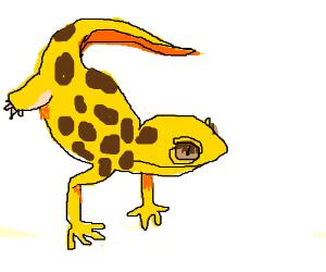 300x250 A Leopard Gecko!