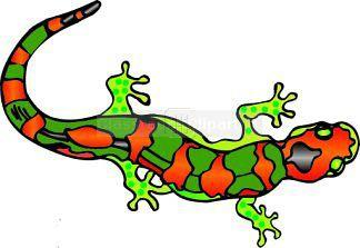 324x223 Salamander Clip Art